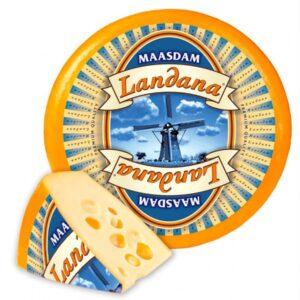 Ландана Маасдам 45% Голландия